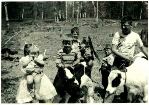 holstein-calves-laurel-holding-bonnie-wendell-tim-randy-chris-summer-1955